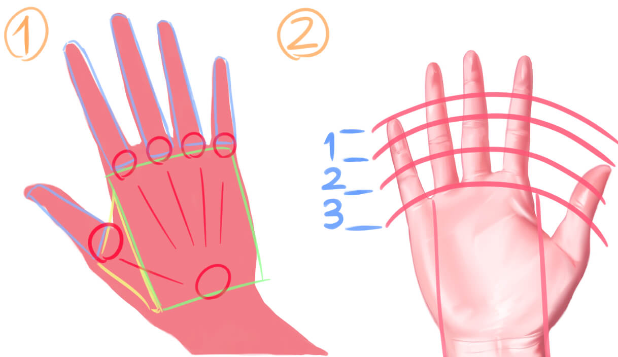 連載第六回 手を描くと絵が上手くなる形でとらえる手の描き方