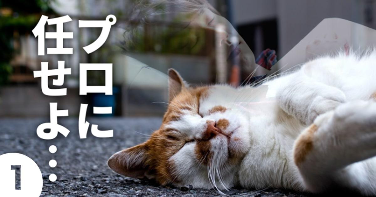 マンガ制作・依頼のポイント①