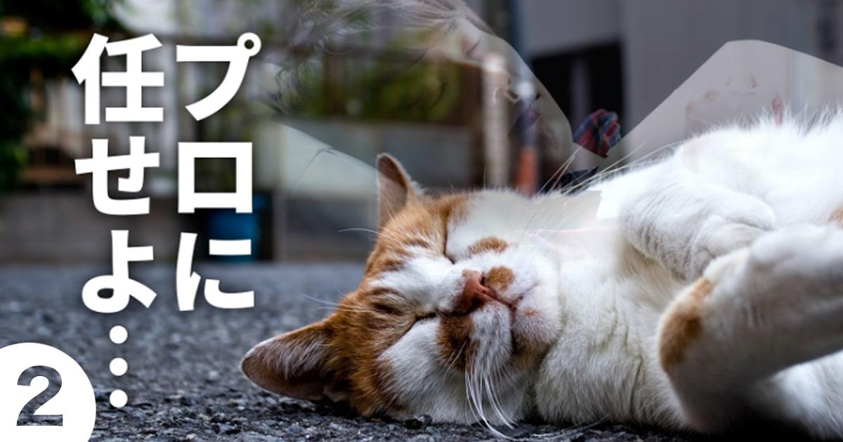 マンガ制作・依頼のポイント②